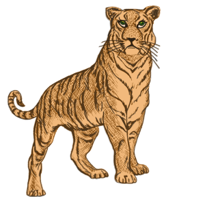 My_Zodiac_Tiger