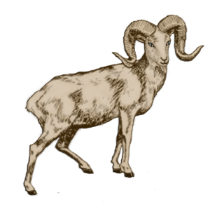 Lucky Goat | by China Rose