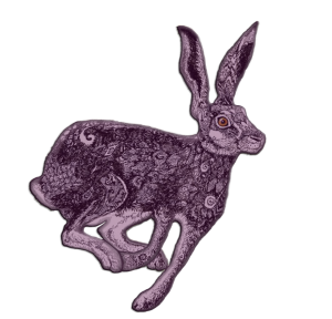 Lucky Hare | by China Rose