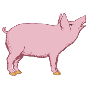 Lucky Pig | by China Rose