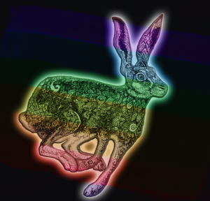 Rainbow Rabbit | by china rose